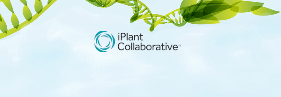 Workshop: iPlant Chile
