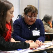 Language Teachers join ARPA's work this 2017