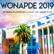 Sixth Chilean Workshop on Numerical Analysis of Partial Differential Equations (WONAPDE 2019)