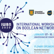 International Workshop on Boolean Networks (IWBN 2020)