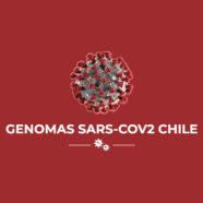 Científicos nacionales realizan mapeo de información genómica del SARS-CoV-2